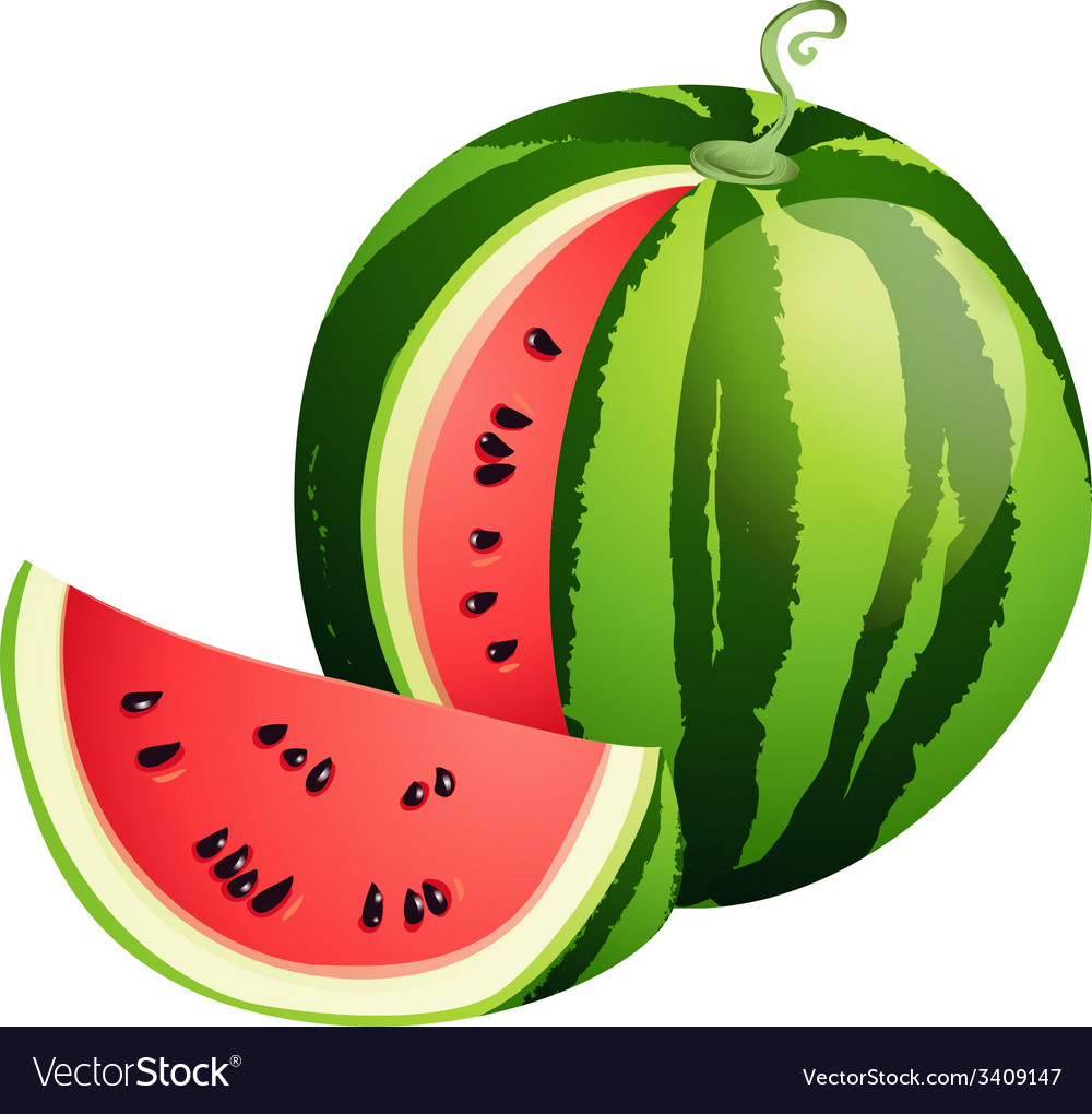 Sliced ripe watermelon isolated on white vector | Price: 1 Credit (USD $1)