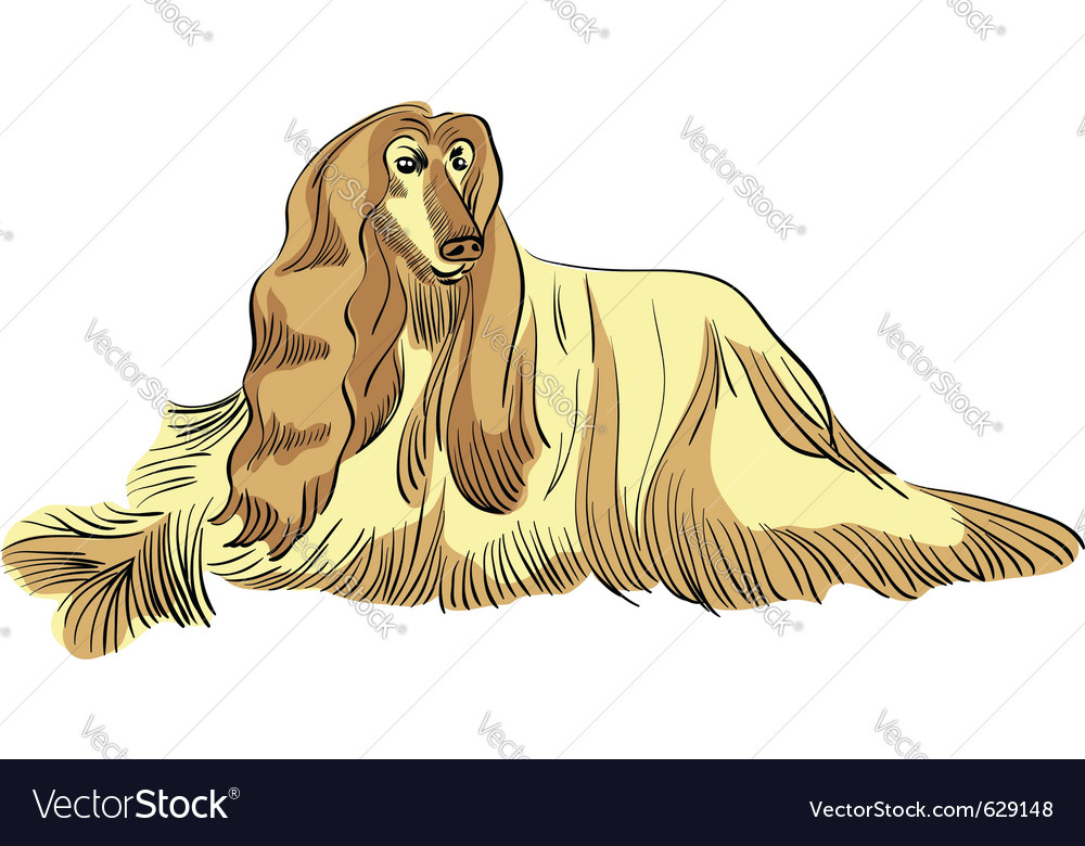 Dog sketch vector | Price: 1 Credit (USD $1)