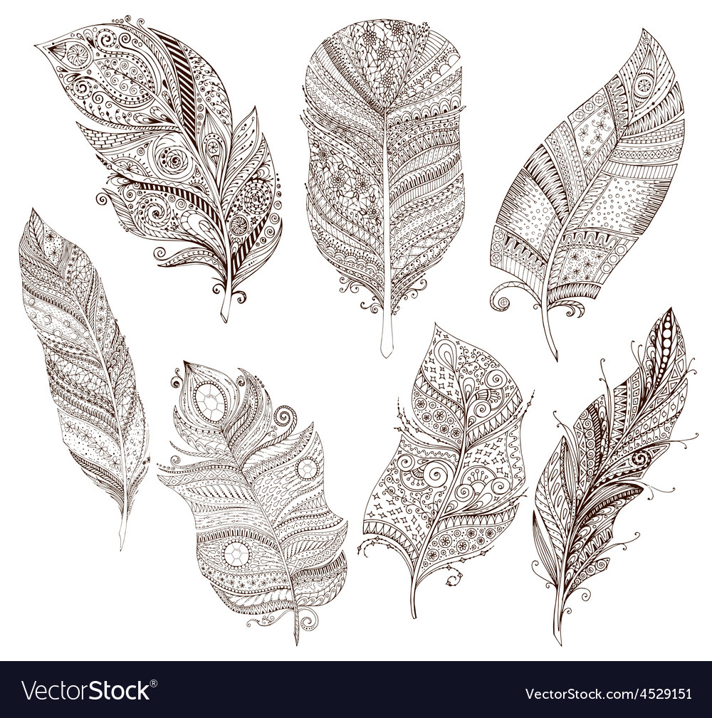 Set of doodle feathers on white background vector