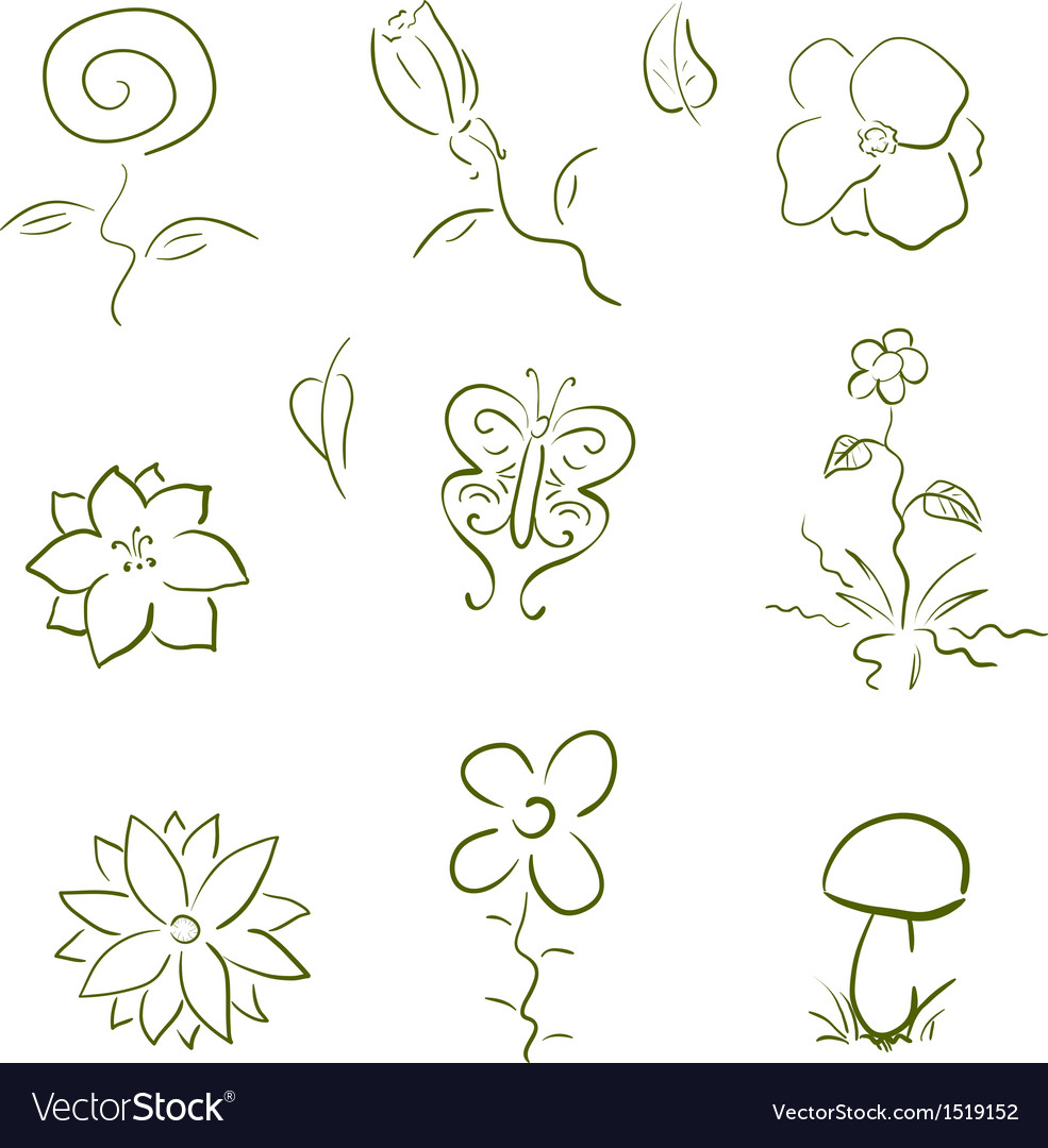 Flora and fauna design elements set vector | Price: 1 Credit (USD $1)