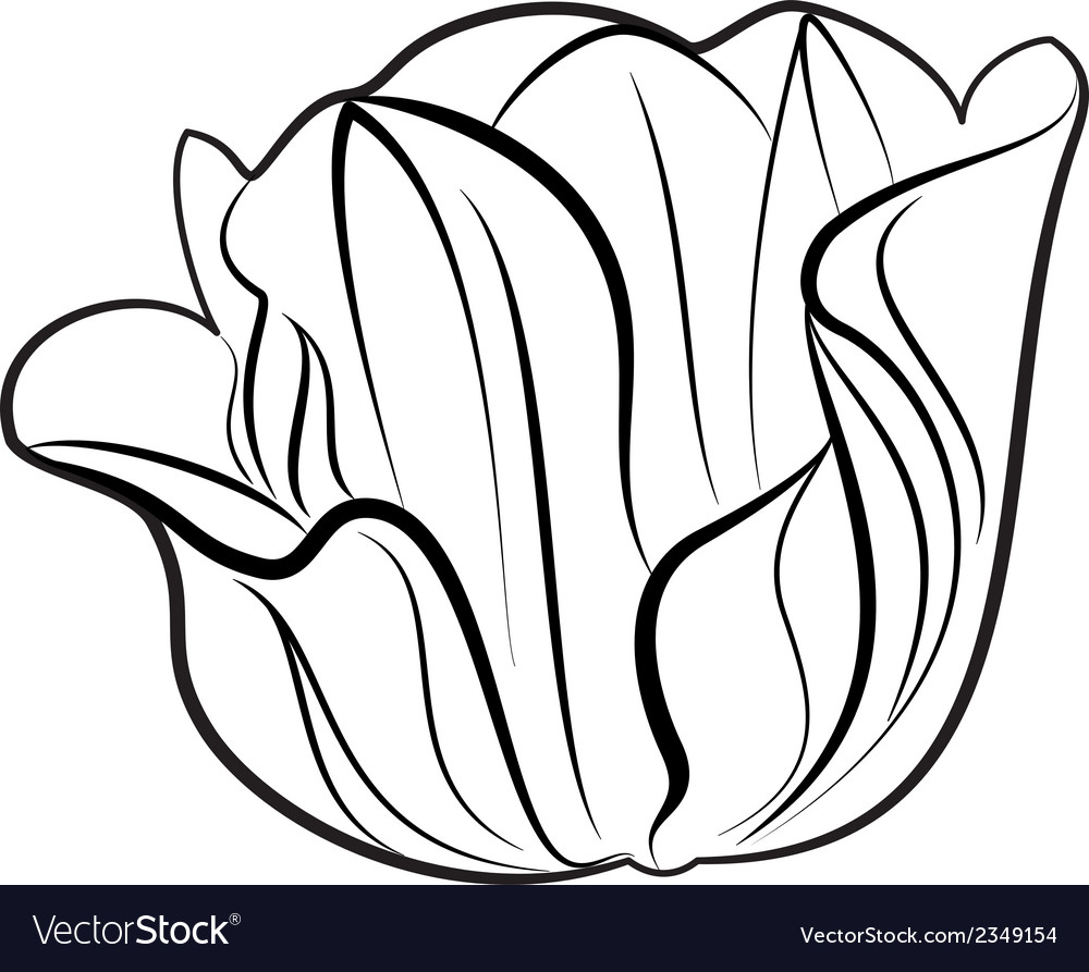 Flower silhouette vector | Price: 1 Credit (USD $1)