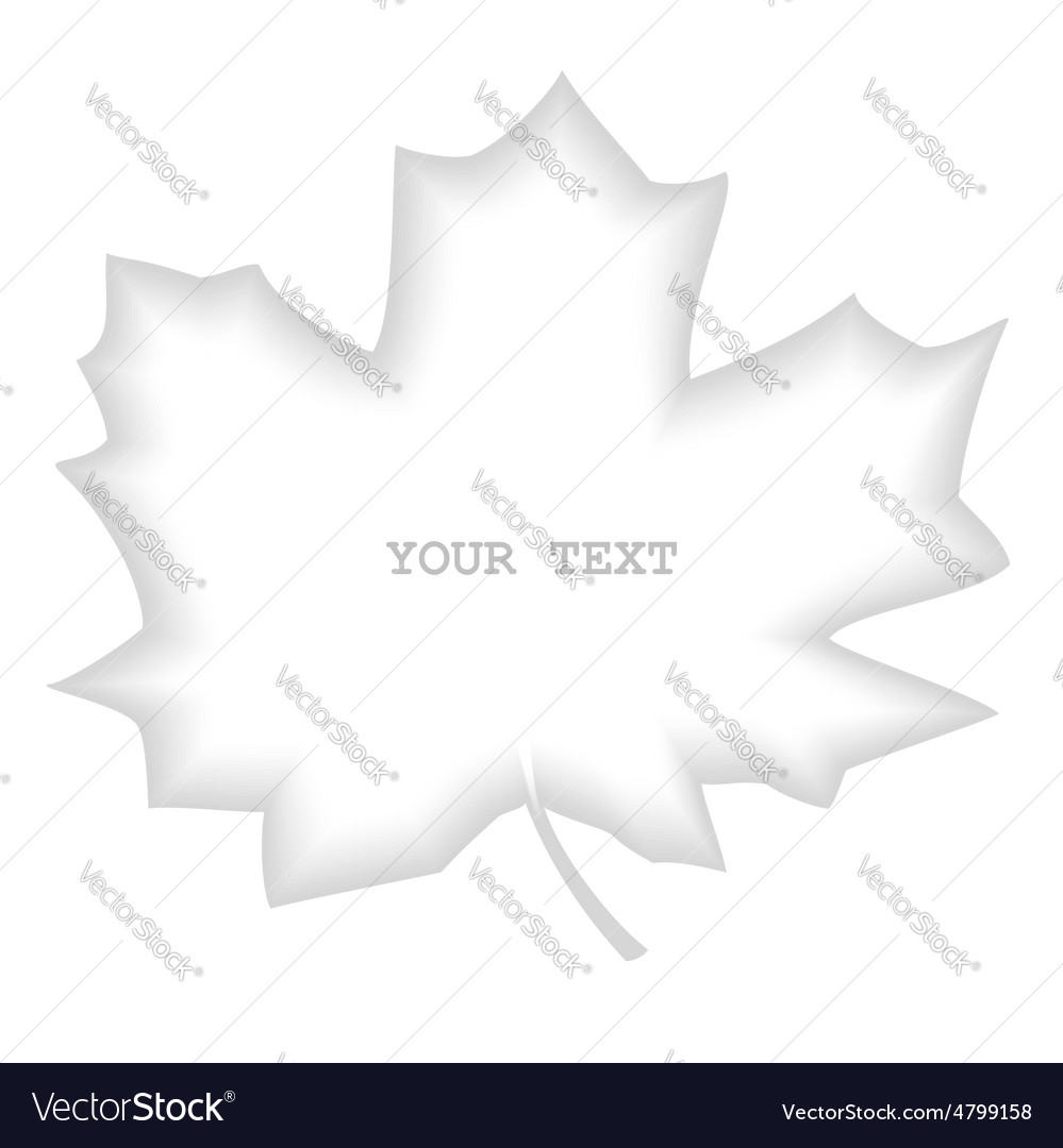 Shaded divider maple leaf vector | Price: 1 Credit (USD $1)