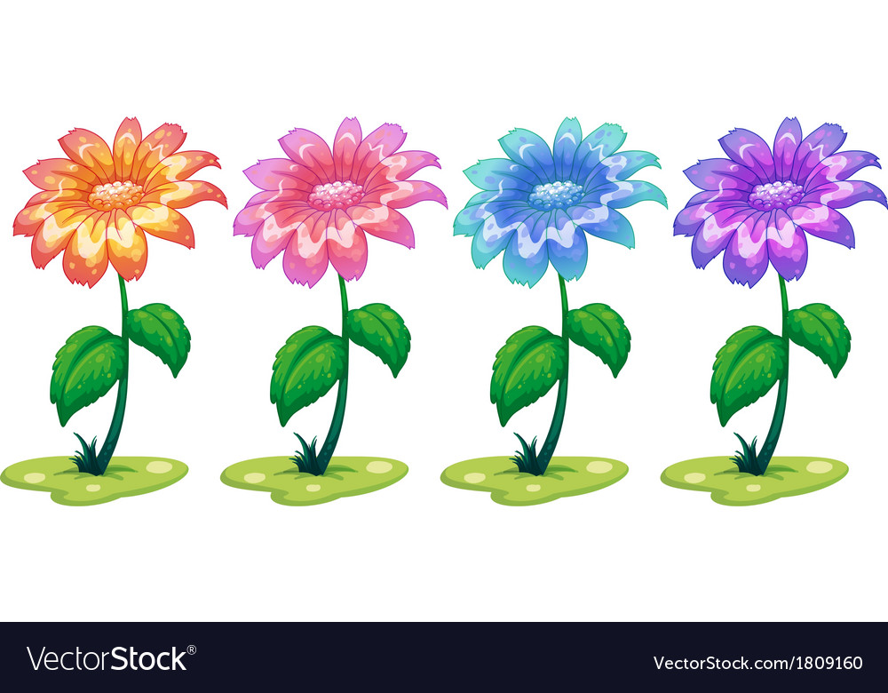 Six colorful flowering plants vector | Price: 1 Credit (USD $1)