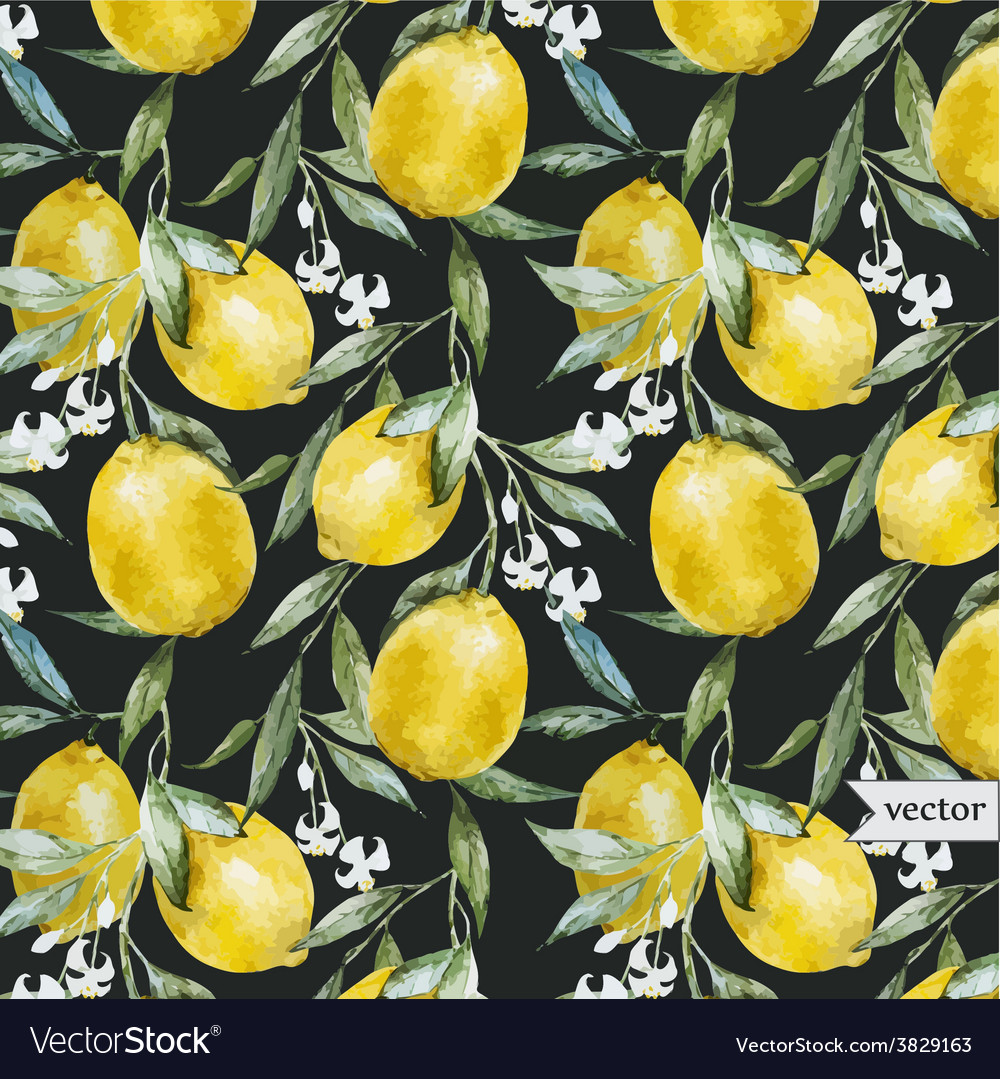 Lemon pattern6 vector | Price: 1 Credit (USD $1)