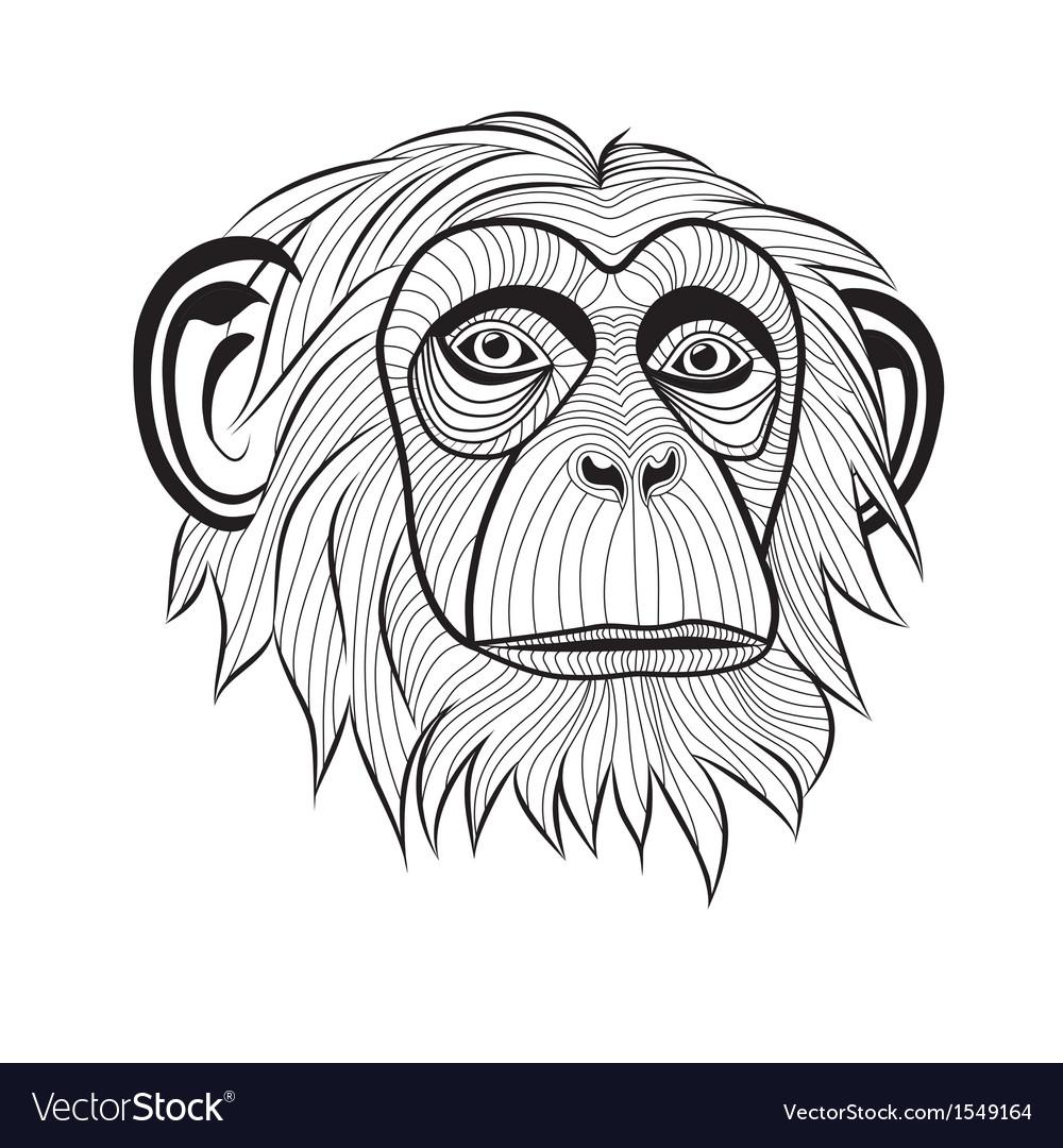 Monkey chimpanzee ape head animal vector | Price: 1 Credit (USD $1)