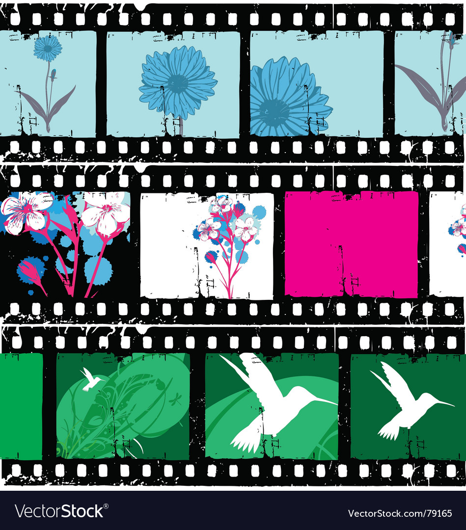 Floral film strips vector | Price: 1 Credit (USD $1)