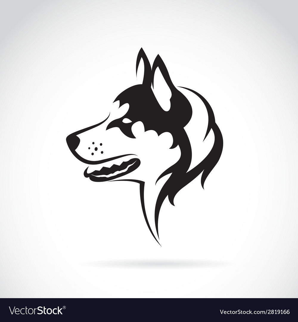 Image of a dog siberian husky vector | Price: 1 Credit (USD $1)