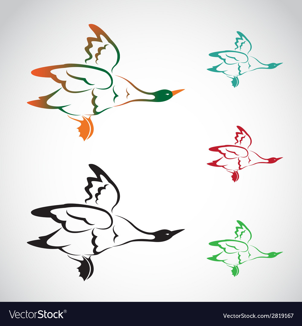 Image of an flying wild duck vector | Price: 1 Credit (USD $1)