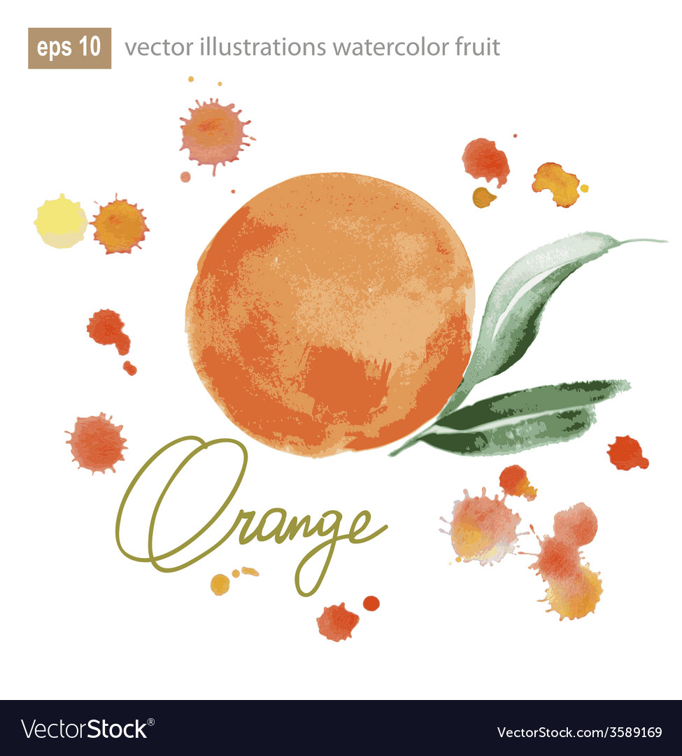 Handmade watercolor orange for retro design vector | Price: 1 Credit (USD $1)