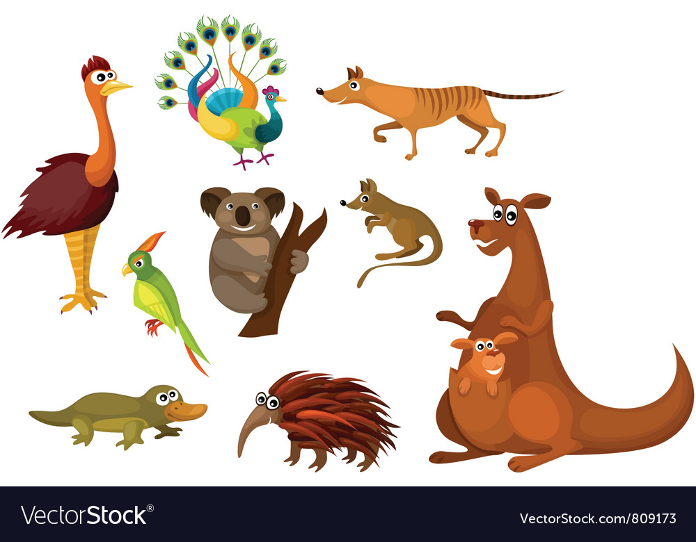 Australian animals vector | Price: 3 Credit (USD $3)