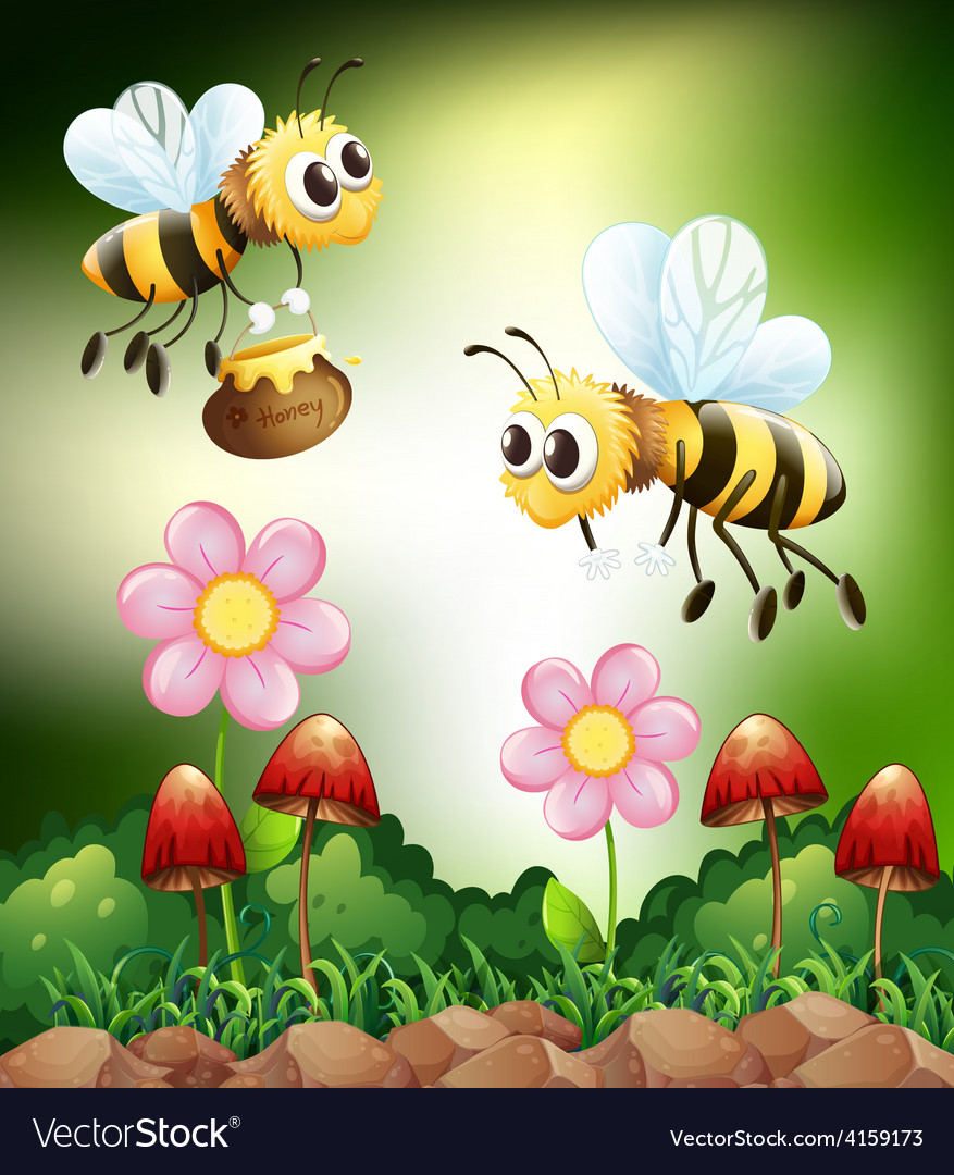 Bee and honey vector   Price: 3 Credit (USD $3)
