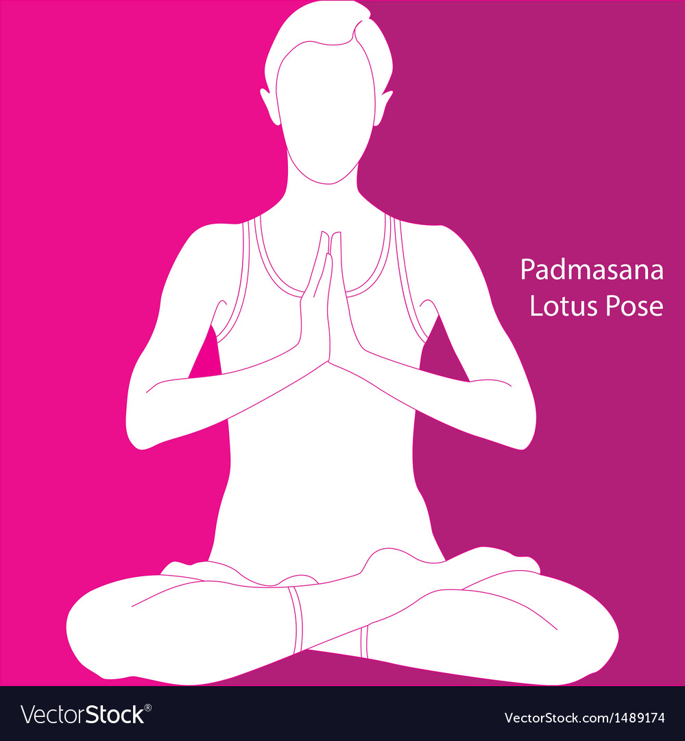 Lotus position - padmasana vector | Price: 1 Credit (USD $1)