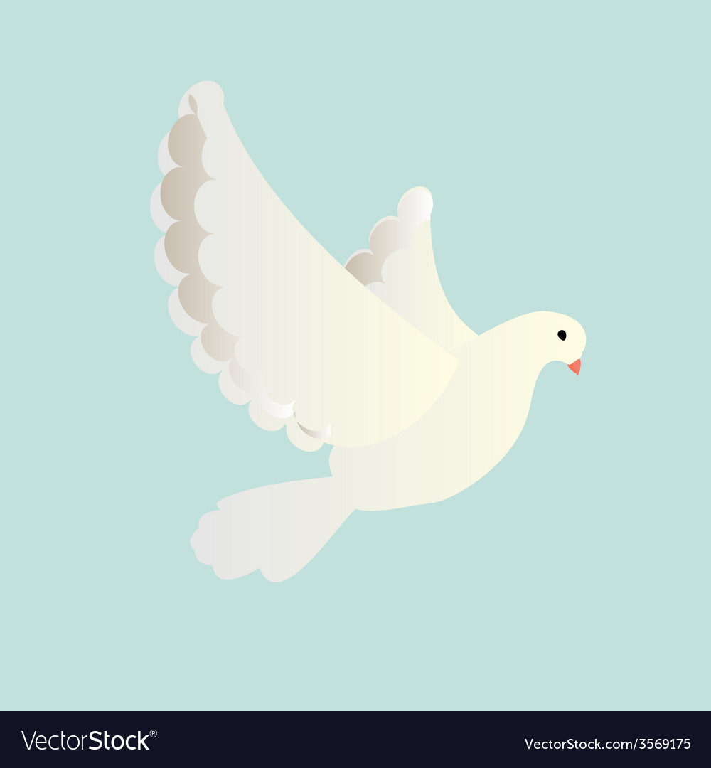 White pigeon vector | Price: 1 Credit (USD $1)