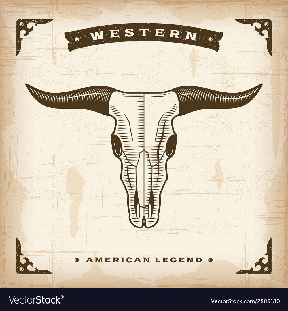 Vintage western bull skull vector | Price: 1 Credit (USD $1)