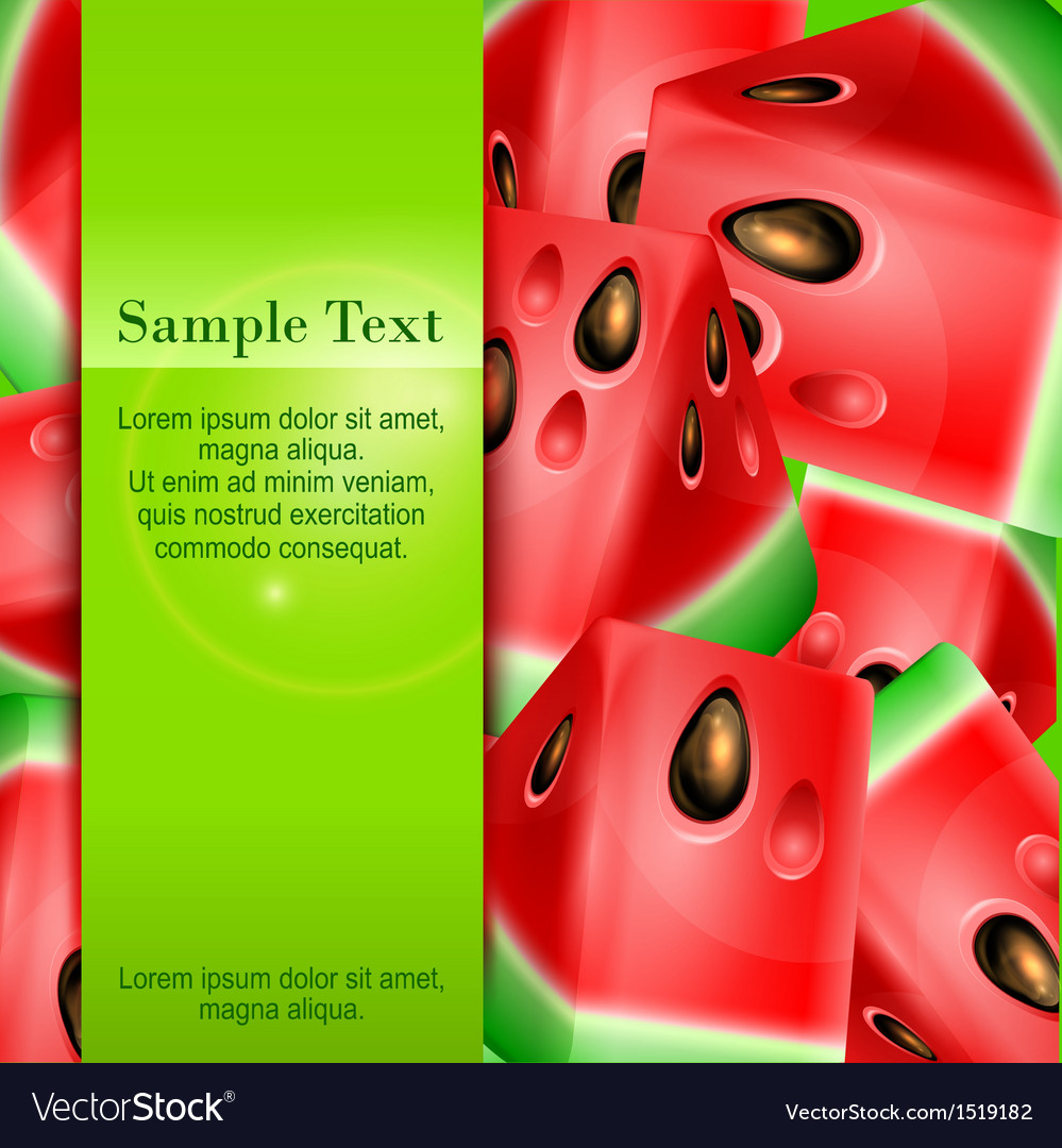 Watermelon banner vector | Price: 1 Credit (USD $1)