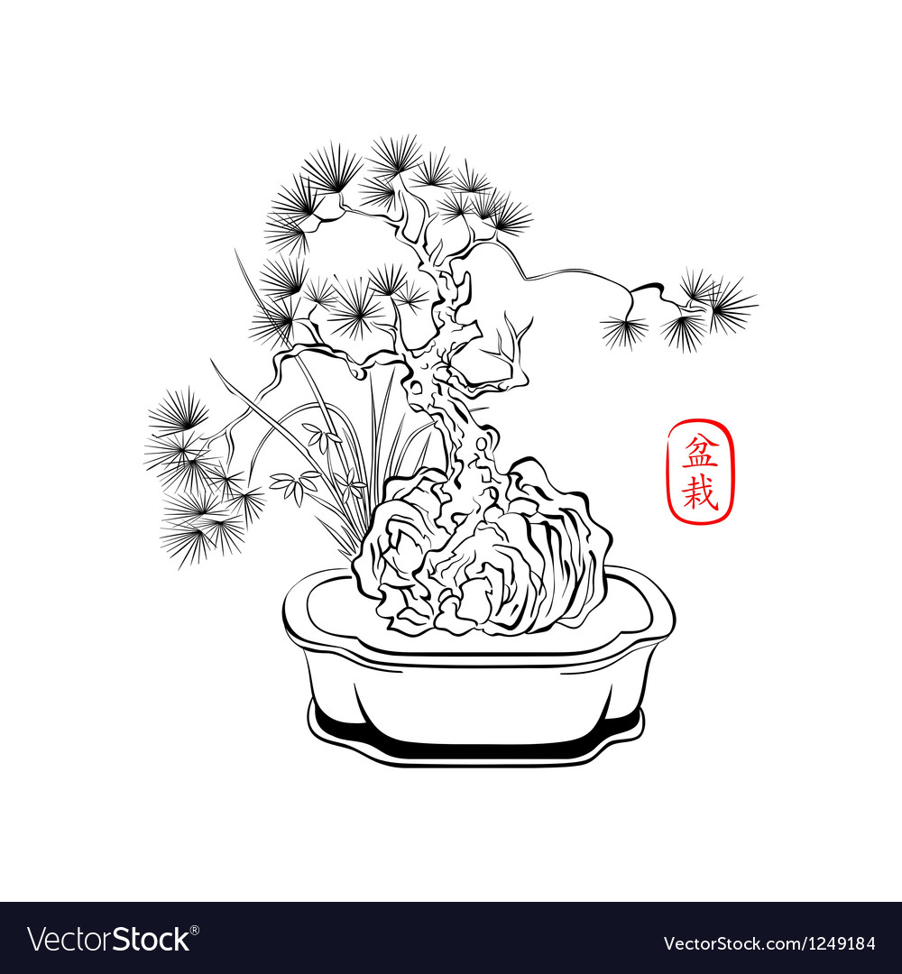 Bonsai art vector | Price: 1 Credit (USD $1)