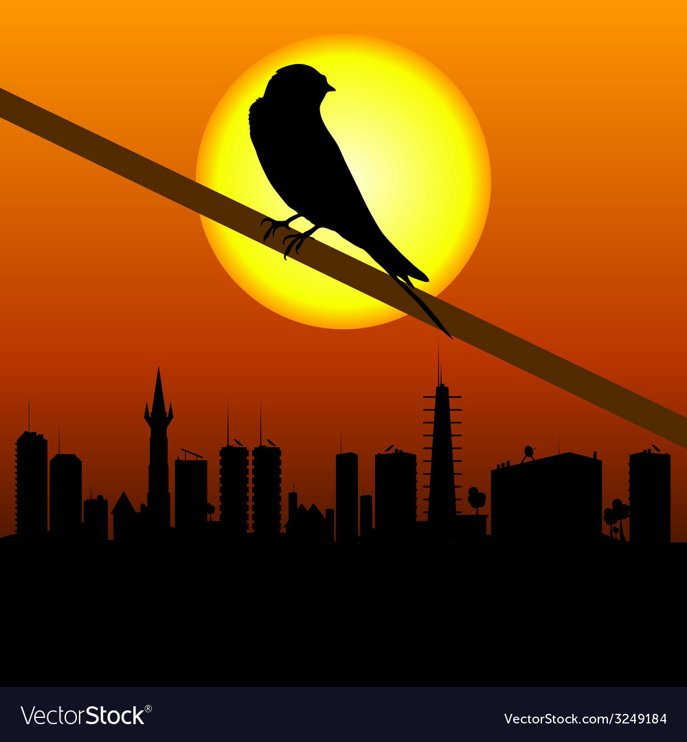 Sparrow with city in background vector | Price: 1 Credit (USD $1)
