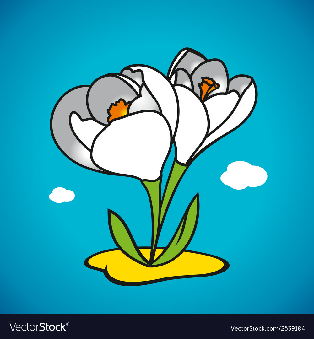 Spring snowdrop vector | Price: 1 Credit (USD $1)