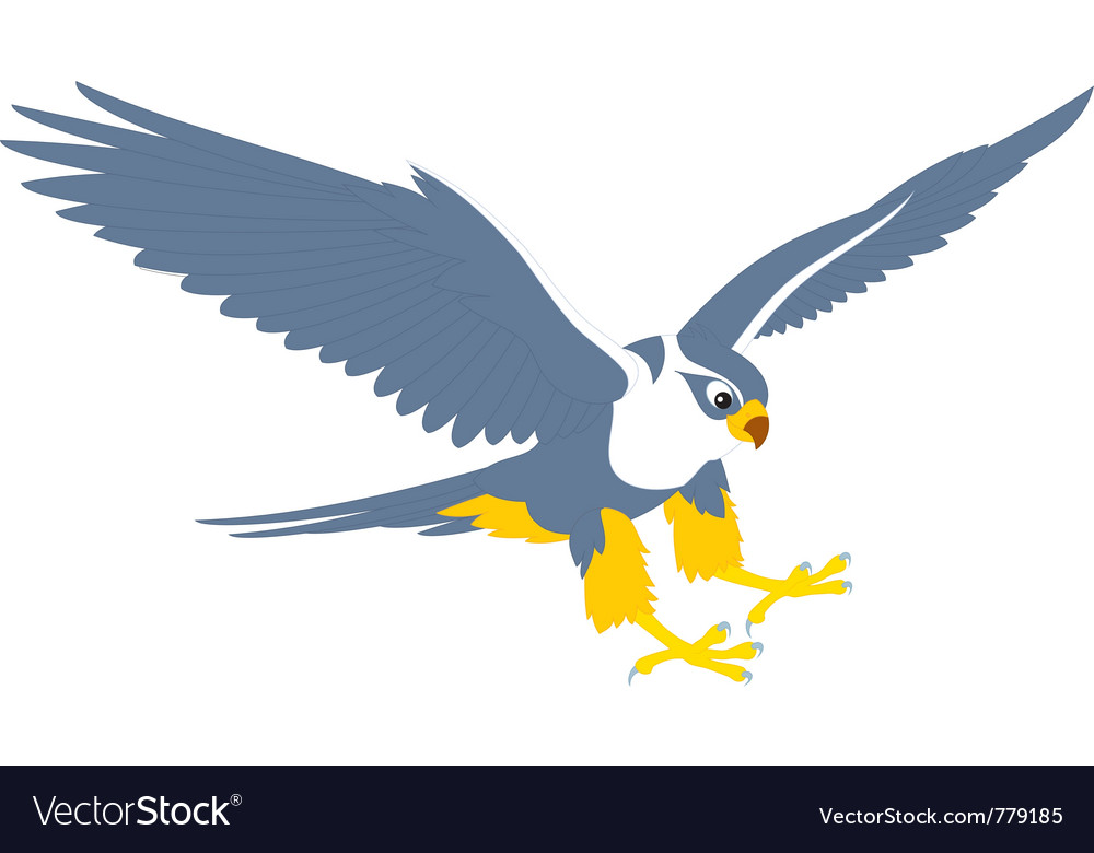 Falcon vector | Price: 1 Credit (USD $1)