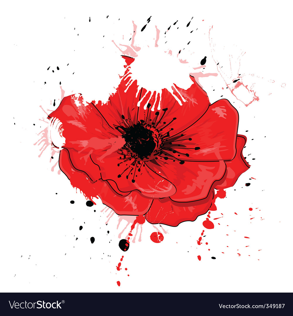 Painted poppy vector | Price: 1 Credit (USD $1)