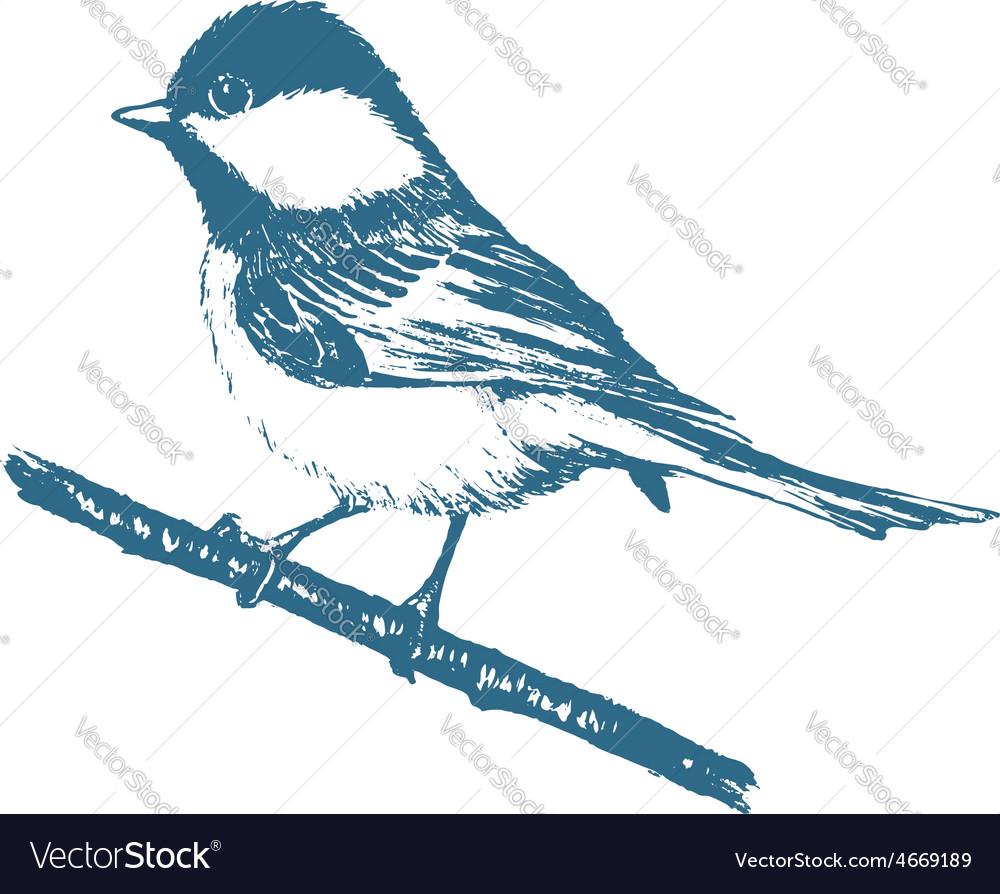 Blue tit print vector | Price: 1 Credit (USD $1)
