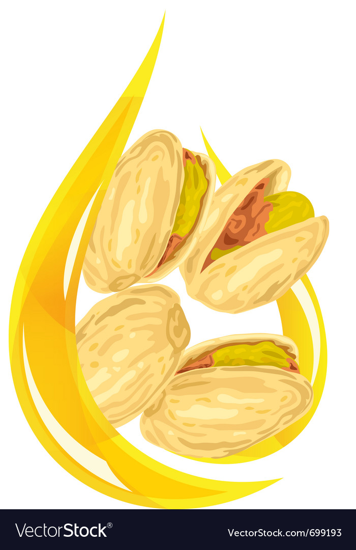 Pistachio oil stylized drop vector | Price: 1 Credit (USD $1)