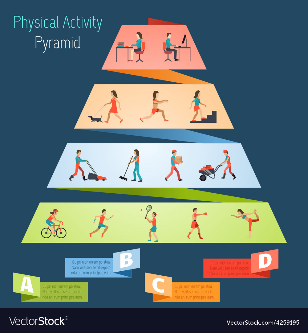 Physical activity pyramid infographics vector | Price: 1 Credit (USD $1)