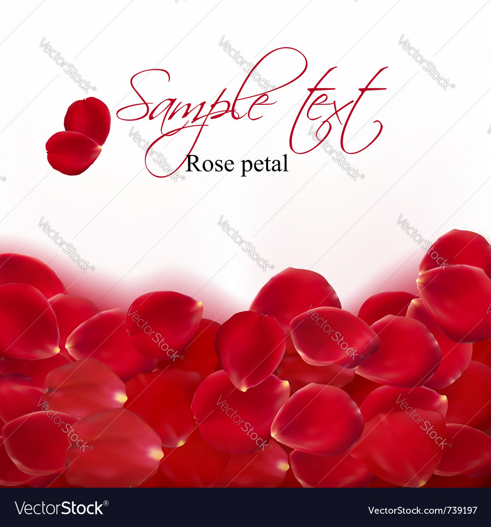 Background of red rose petals vector   Price: 1 Credit (USD $1)