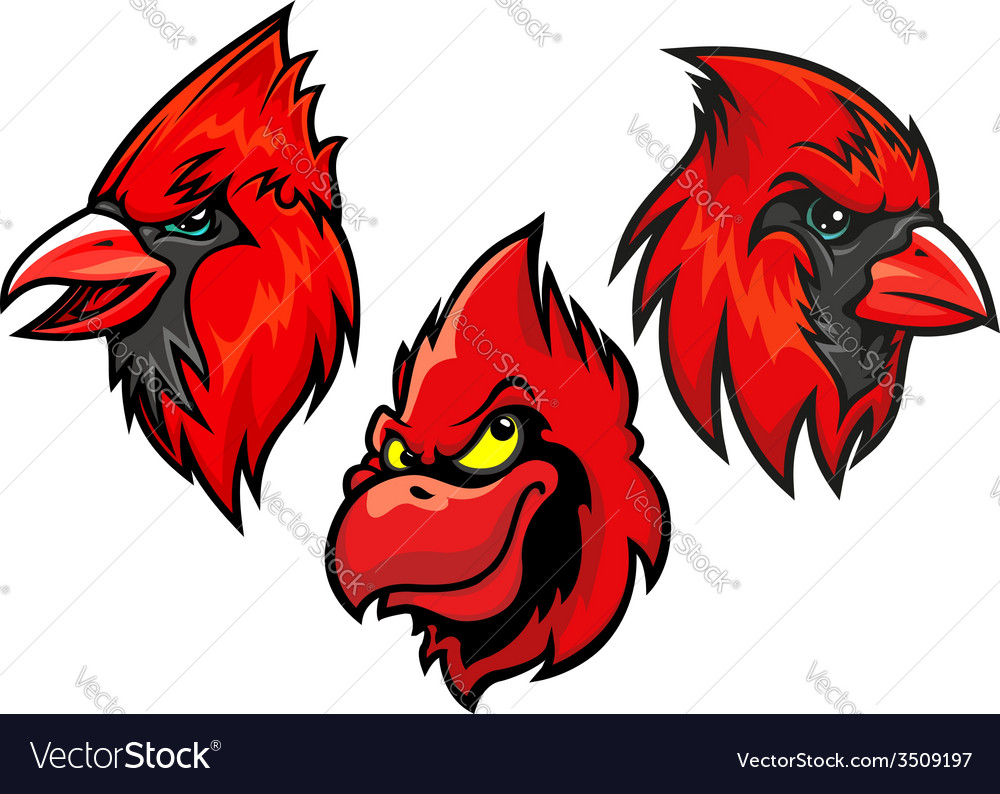 Cardinal bird heads set vector | Price: 1 Credit (USD $1)