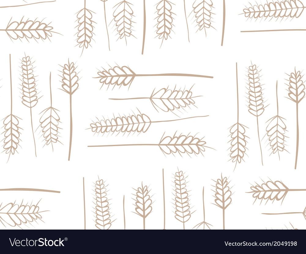 Cereal plant seamless pattern vector | Price: 1 Credit (USD $1)