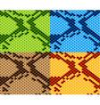 Snake skin seamless wallpaper vector
