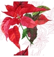 Seamless pattern with poinsettia plant-03 vector