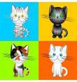 British cats of various colors vector