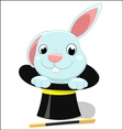 Cute bunny on magician hat vector