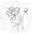 Seamless pattern black and whitepeonies and iris vector