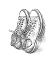 Pair of casual shoes with shade vector