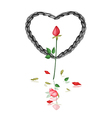 A black rope heart with red roses vector