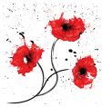Painted red poppy vector