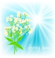 Card with small white flowers vector