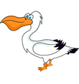 Pelican bird vector