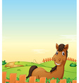Horse in farm vector