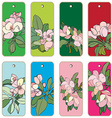Apple tree flowers tags vector