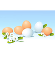 Eggs and spring flowers on blue background vector