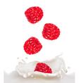 Raspberry milk vector