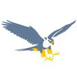 Falcon vector