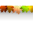 Background autumn big top leaves white vector