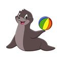 Cartoon sea lion vector