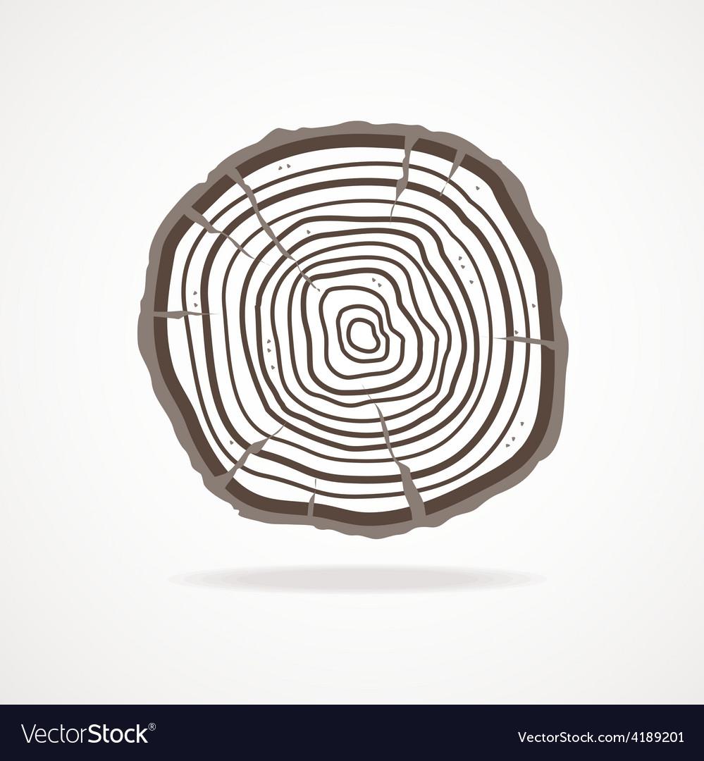 Tree rings flat design vector   Price: 1 Credit (USD $1)