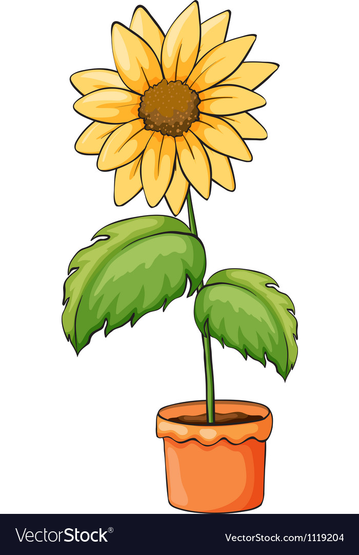 A flower plant in a pot vector | Price: 1 Credit (USD $1)