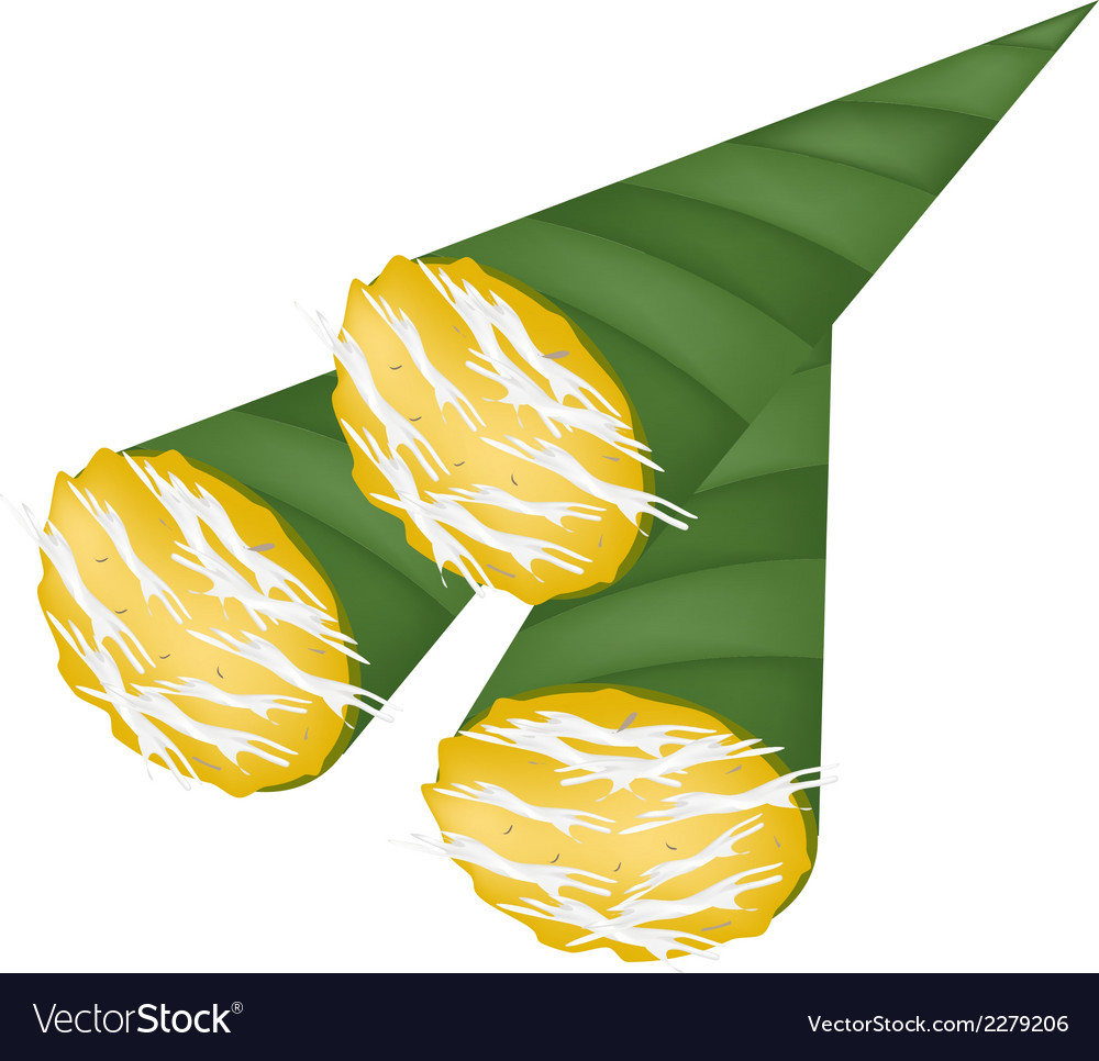 Thai toddy sugar palm cake in banana leaf cone vector | Price: 1 Credit (USD $1)